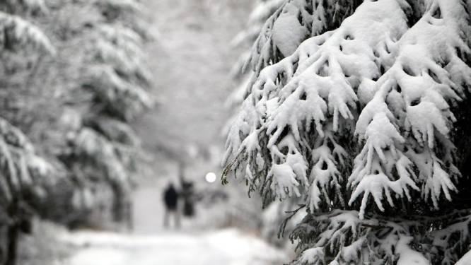 9 cm sneeuw op Hoge Venen en winter steekt nog tandje bij