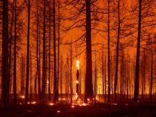 Branden in Californië laaien op door hitte, droogte en sterke wind
