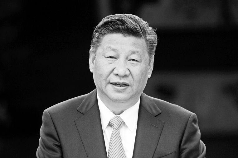 Chinese president Xi Jinping Beeld Maurizio Gambarini/dpa