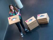 Theater dicht? Dan thuis creatief aan de slag: Cultura biedt Out-of-the-Box-verrassingsdozen aan