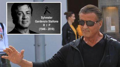 """""""Ik ben springlevend"""": doodverklaarde Sylvester Stallone reageert op internethoax"""
