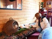 Dierenopvang Kattenwoud in Nispen is 'de hemel op aarde voor dieren'