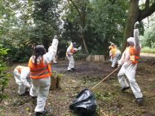 Été Solidaire: la Ville de Charleroi engage des jeunes de cité pour leurs quartiers
