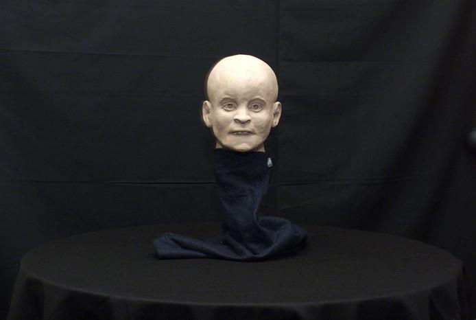 Reconstructie van het hoofd van het Meisje van Nulde.