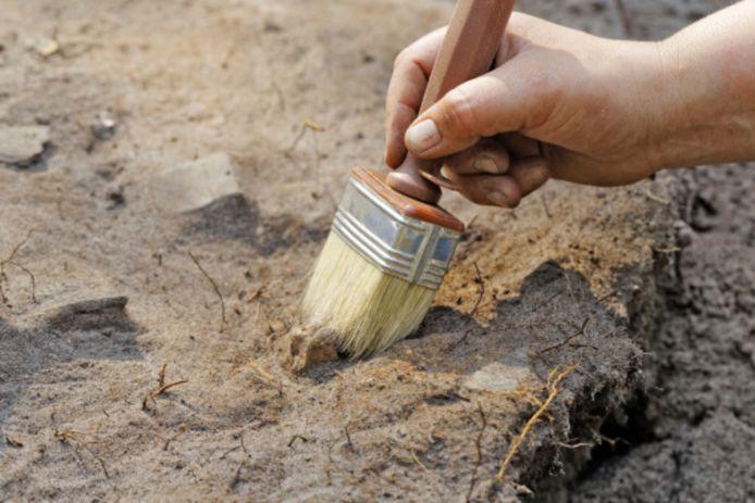 De gemeente Zaltbommel moet van de rechter de archeologisch waardevolle terp in Nieuwaal exact gaan meten.