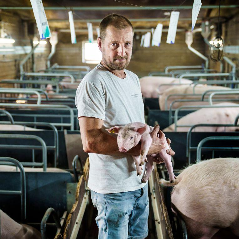 Jos van Sleeuwen, varkenshouder uit Boekel, heeft zelf andere boerenbedrijven gekocht.  Beeld Maikel Samuels