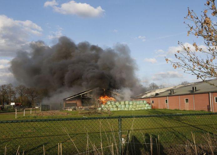 Brand bij varkensbedrijf Van der Meijden in Spoordonk