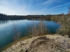 Acht hectare bos tegen de vlakte voor oevers Plassen van Hofmans