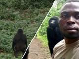 Maker gorillaselfie vertelt hoe hij zijn virale foto maakte