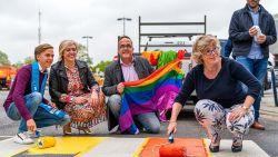 Stadsmedewerker riskeert ontslag na homofobe post op Facebook