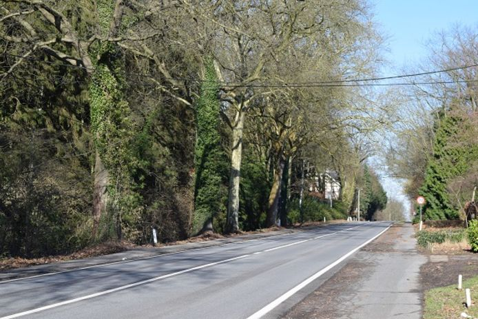 Naamsesteenweg in Oud-Heverlee