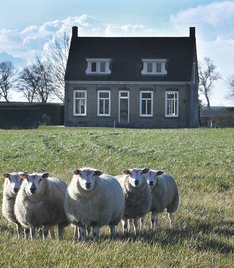 Misschien het kleinste gehucht van Zeeland, drie boerderijen, meer niet