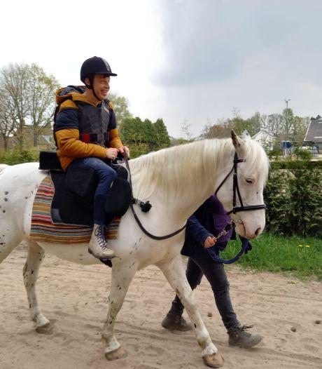 Stalvrienden in Veldhoven wil merrie Sproet voor gehandicaptensport