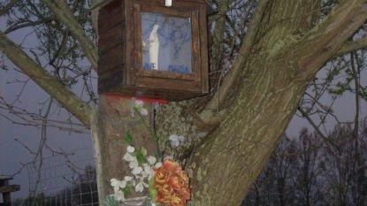 Regionale erfgoeddienst Schelde-Durme lanceert meldpunt voor bijzondere kapellen