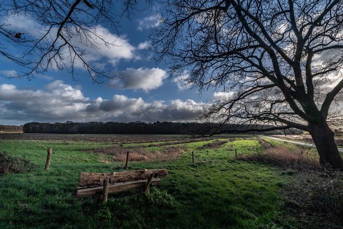 Landschap op  de Brabantse Wal, landgoed Mattemburgh, op de grens van Woensdrecht en Bergen op Zoom.