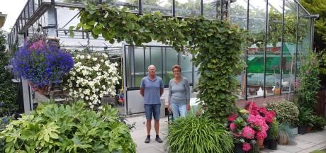 Sjaak en Maartje over prachtige tuinderswoning: 'Lust voor het oog en een klus voor het leven'