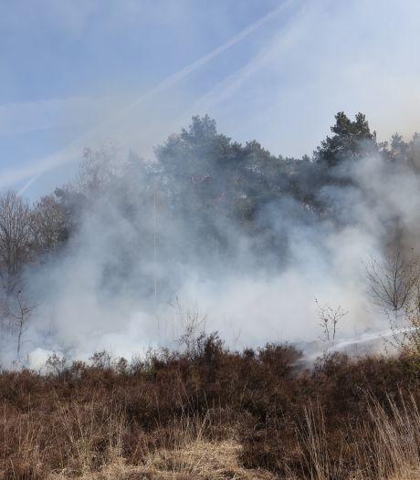 Stuk bos en heide in brand op Vughtse Heide