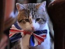 Britten vrezen dat 'boze' Boris Johnson luie huiskat Larry de deur uitzet