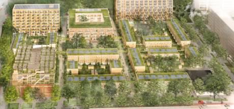 Meer woningen op plek 10-hoogflat, maar dat gaat wel ten koste van tientallen bomen