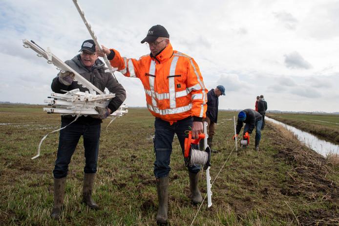Aad, Ton, Wim, Theo en Hans (vlnr) leggen een hekwerk aan voor weidevogels in de polder Arkemheen.