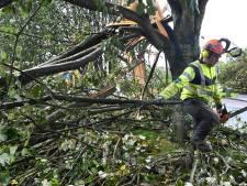 Tempête Aurore: quatre morts en Pologne, transports et électricité perturbés dans le nord de l'Europe