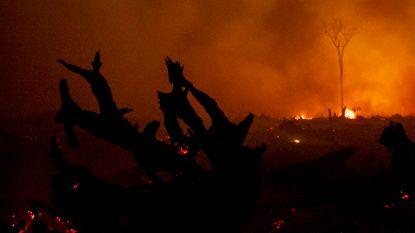 Indonesië creëert artificiële regen tegen bosbranden