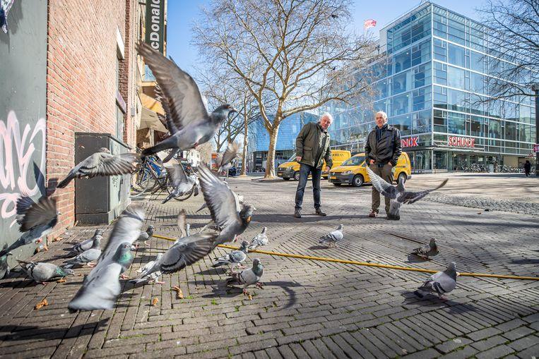In Heerlen heeft men al jaren last van duiven in de binnenstad, het voorstel is nu om de duiven te voeren met anticonceptiemiddelen waardoor eieren niet uitkomen. Links: Ger Bisschops. Rechts: Hans Pennings. Beeld Laurens Eggen