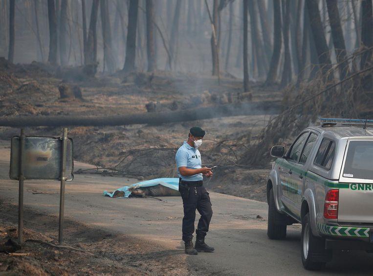 Een politieagent staat voor een omgekomen slachtoffer van de bosbranden. Beeld reuters