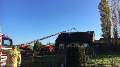 Bejaarde man gestorven bij brand in Wijtschate