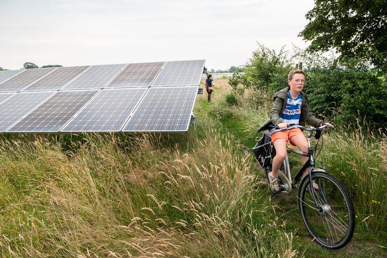 Zonnepark in gemeente Hengelo. Beeld Simon Lenskens
