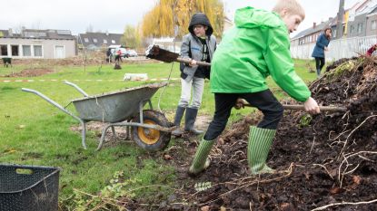 Buren en sympathisanten helpen kinderen van MPI 't Craeneveld bij aanleg groene speelplaats rond de school