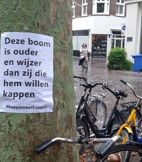 Posters op bomen in Deventer binnenstad tegen kap; wie weet waar dit protest vandaan komt?