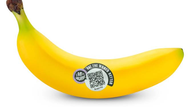 Scan de QR-code en kom alles te weten over de eerlijke banaan: 'Wij willen transparant zijn'
