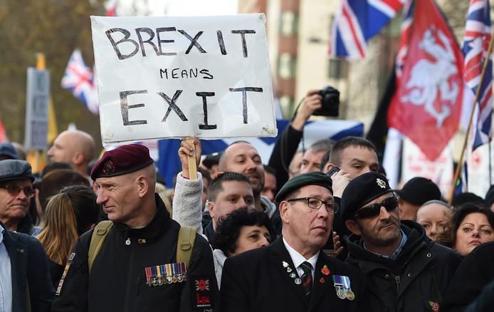 Archiefbeeld: pro-brexit demonstranten pleiten voor een definitief uittreden