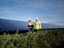 'Geen zonneparken op agrarische grond bij Dinteloord'