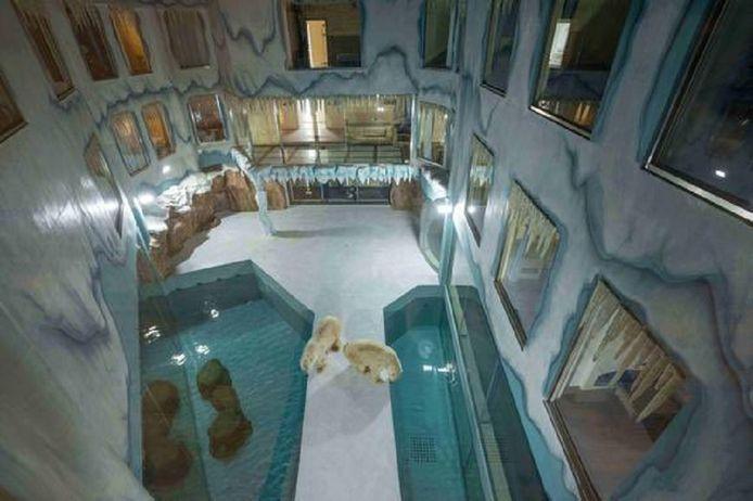Het hotel is gebouwd rond het binnenverblijf van de ijsberen.