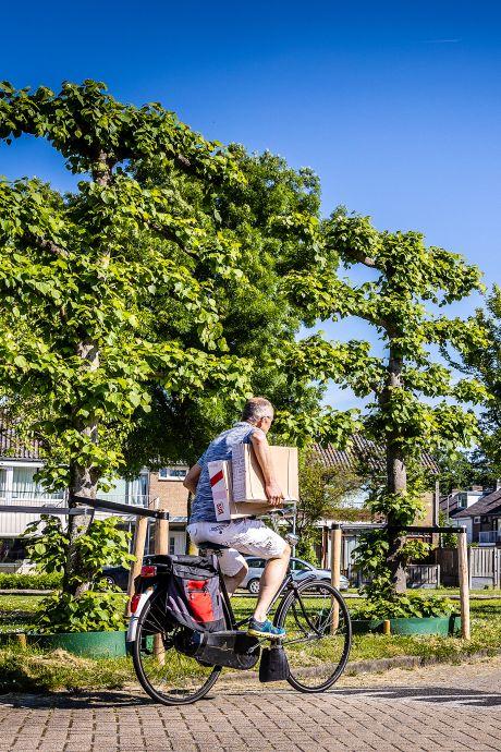 Zwijndrecht gaat bomen beter beschermen: 'Zeker in deze regio, met al het fijnstof, zijn ze extra belangrijk'