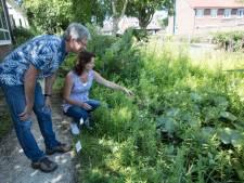 IVN leidt 35 natuurgidsen op in Veldhoven