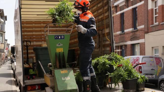 Politie rolt plantage op met 1.100 plantjes in voormalig frituur