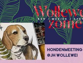 Honden palmen zondag jeugdhuis Wollewei in
