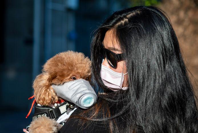 Deze vrouw in de Chinese stad Guangzhou neemt het zekere voor het onzekere en beschermt ook haar hond.