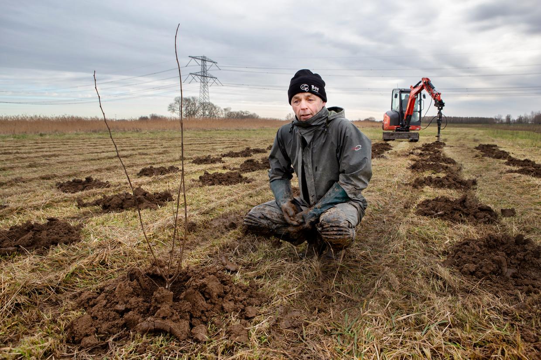 Dirk Bos en zijn vader Wim Bos planten een bos in de Biesbosch. Beeld Pauline Niks