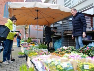 """Nieuwe marktplannen voor Wingene en Zwevezele: """"Hebben geleerd uit de tijdelijke corona-opstelling"""""""
