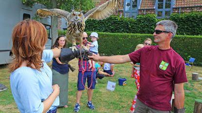 Roofvogels stelen show op Kobbegem Kermis
