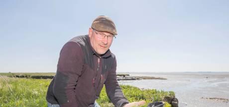 Zeeuwse lamsoren zijn perfect bij vis én vlees