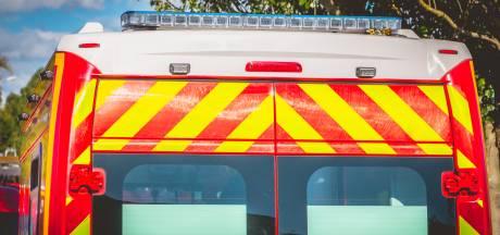 Grosse intervention des pompiers à Flémalle pour un feu de végétation