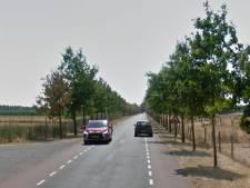 Wegwerkzaamheden op de Telefoonweg in Renkum zijn uitgesteld: het is te nat en te koud
