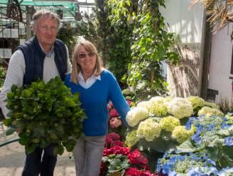 """Guy en Bea kunnen klanten niet missen en heropenen hortensiakwekerij: """"We willen de 100ste verjaardag van het bedrijf nog meemaken"""""""