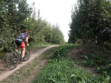 Roep herstel historische Liniedijk Hulst wordt luider
