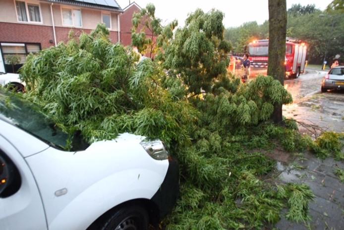 Een boom is omgevallen op de Riviersingel in Helmond door de stormschade.